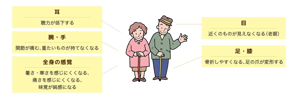 高齢者の心身の特徴